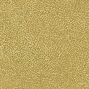 Maxicomforter Golden Technologies Of Canada