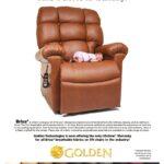 thumbnail of Golden Brisa Sell Sheet